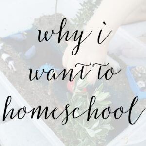 Why I Want to Homeschool