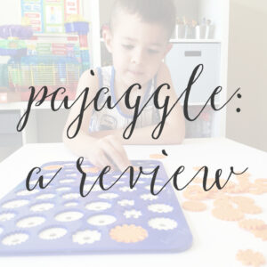 Pajaggle: A Review
